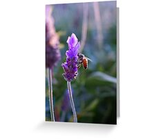 Smelling-bee Greeting Card