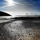 Manorbier- Fade To Gray by Mark Haynes Photography