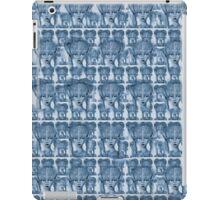 blue willow princess iPad Case/Skin