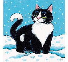 Knee Deep in the White Stuff (Tuxedo Cat in Snow) Photographic Print