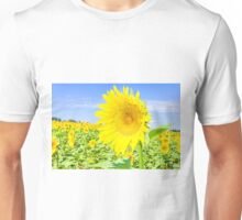 Sunflower field Unisex T-Shirt
