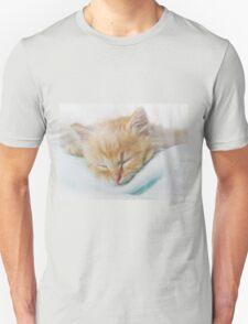 Cozy Kitty Unisex T-Shirt