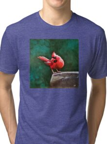 Who's Looking at You? Red Cardinal Oil Painting Print Tri-blend T-Shirt