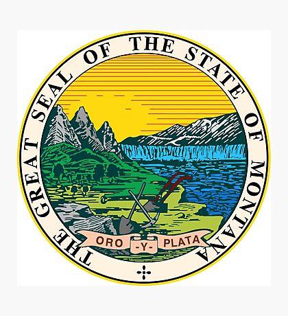 Montana seal Photographic Print