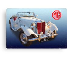MG-T Canvas Print