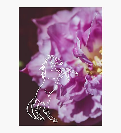 Purple Flower and Rearing Horse Photographic Print