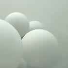 Snowballs by Bluesrose