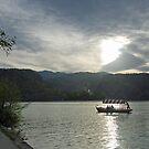 Romantic boattrip on lake Bled - Slovenia by Arie Koene