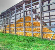 Piled High Corn by James Brotherton