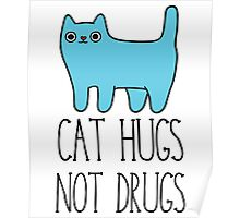 Cat Hugs, Not Drugs Poster