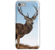 Red Deer Stag on a Hilltop iPhone Case/Skin
