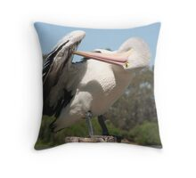 Preening Time Throw Pillow
