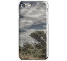 Warren Sky 2 iPhone Case/Skin