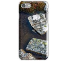 Track to Twisted Lakes, Cradle Mountain iPhone Case/Skin