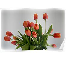 Giving Thanks Tulips Poster