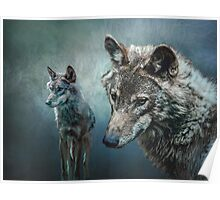 Wolves in Moonlight Poster