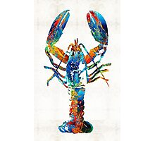 Colorful Lobster Art by Sharon Cummings Photographic Print