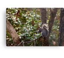 A Fine Day to Forage Metal Print
