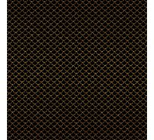Gold Scales Photographic Print