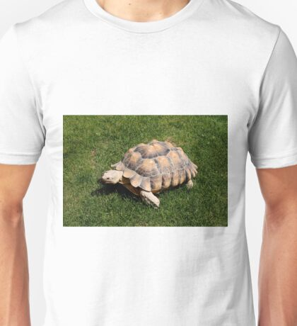 Tortoise 2 at the zoo Unisex T-Shirt