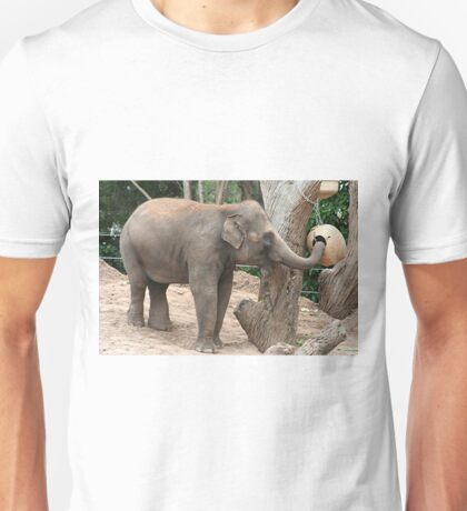 Asian elephant at the zoo Unisex T-Shirt
