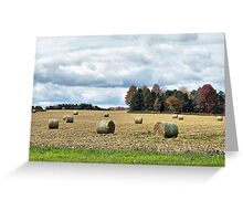 Ohio Bale-Out Greeting Card