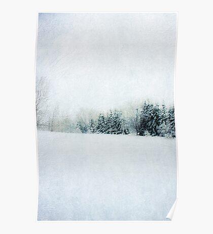 Walking in fields of snow Poster