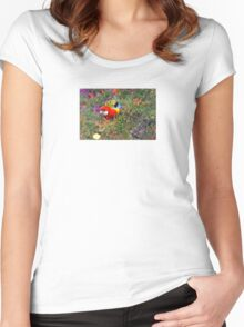Eastern Rosella Women's Fitted Scoop T-Shirt