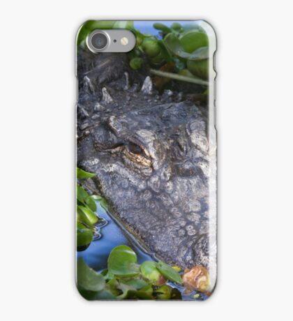 Alligator (Alligator Mississippiensis)  iPhone Case/Skin