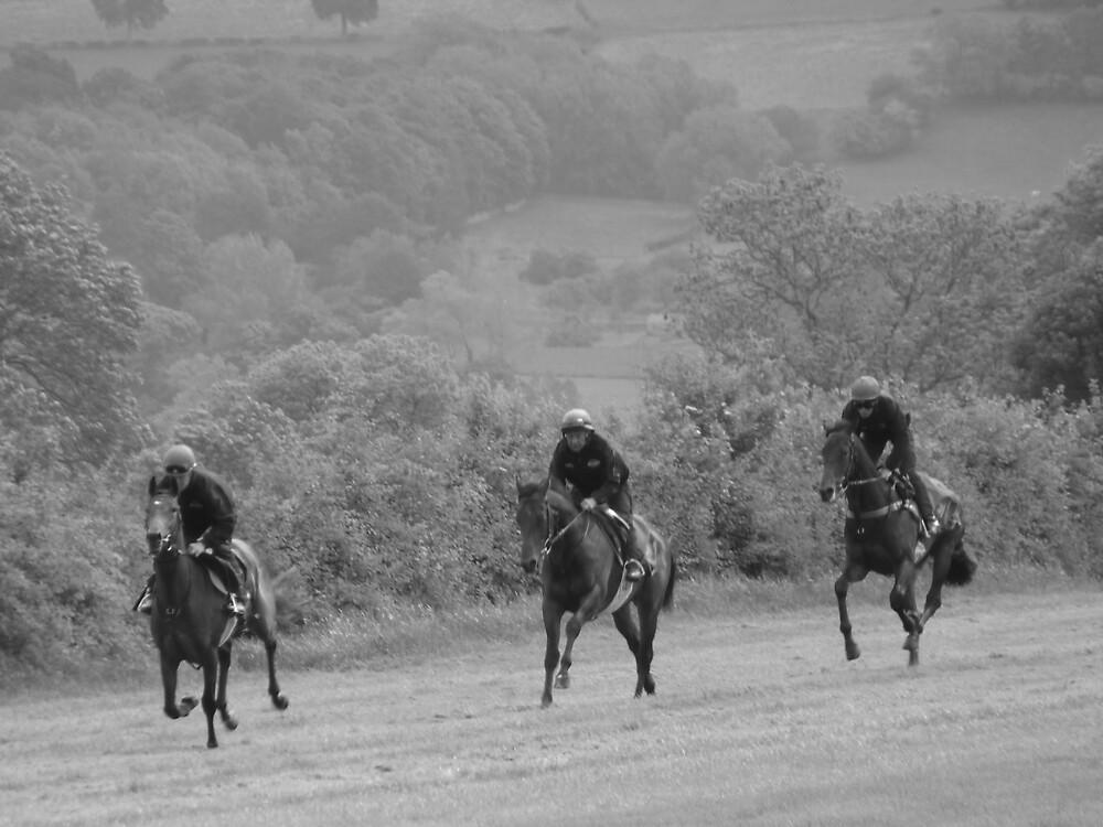 Mark Johnston's Gallops - Middleham #2 by Graham Geldard