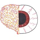 Brain/Eye by SteveHanna