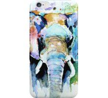 Splash of colour iPhone Case/Skin
