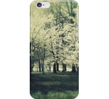 Secret walk through time iPhone Case/Skin