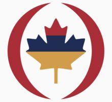 Armenian Canadian Multinational Patriot Flag Series Kids Tee
