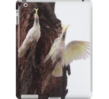 Who are you calling noisy iPad Case/Skin