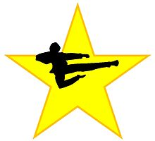 Jump Kick Silhouette Star by kwg2200