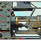 Traction engine close up collection 4 by Avril Harris