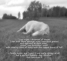 Sleeping White Horse Ranch Field Equine B&W Photo  by Skye Ryan-Evans