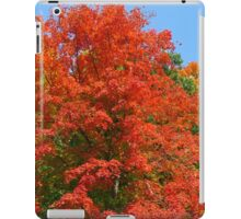 Autumn Red iPad Case/Skin