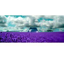 Utopia - Purple Landscape Photographic Print