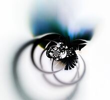 Jewel by arcofarc