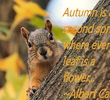 Fall card with Squirrel by Keala