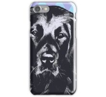 Black Lab Beauty ~ Poster iPhone Case/Skin