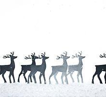 Christmas Reindeer by Andrew Bret Wallis