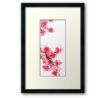 Cherry Blossoms Triptych III Framed Print