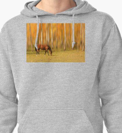 Mystic Autumn Grazing Horse Pullover Hoodie