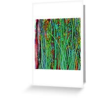 Qualia's Grass Greeting Card