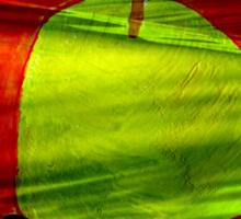 Green apple on red background Sticker
