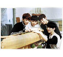 seventeen performance team Poster