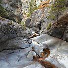 Canyon view II by zumi